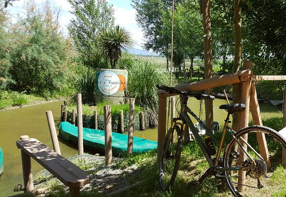 COUNTRY BIKE TOUR – Discovering the Fucecchio Marshes Natural Reserve