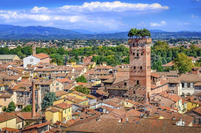 LUCCA LOW COST